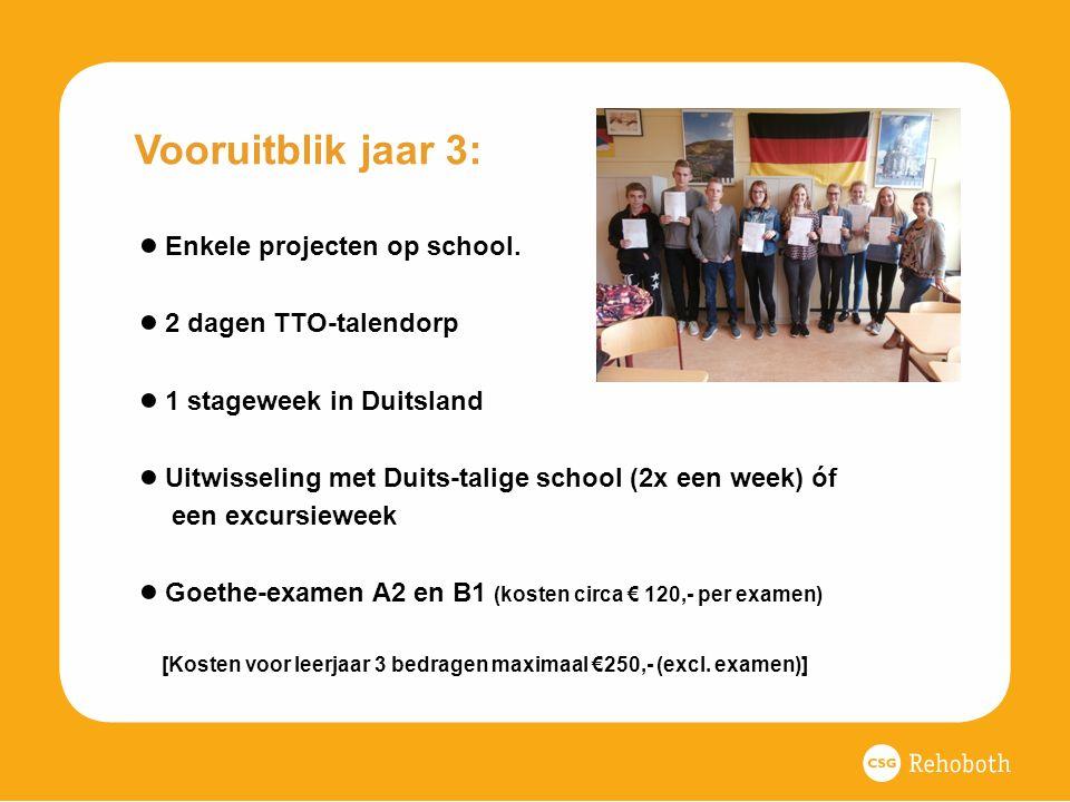Vooruitblik jaar 3: ● Enkele projecten op school.