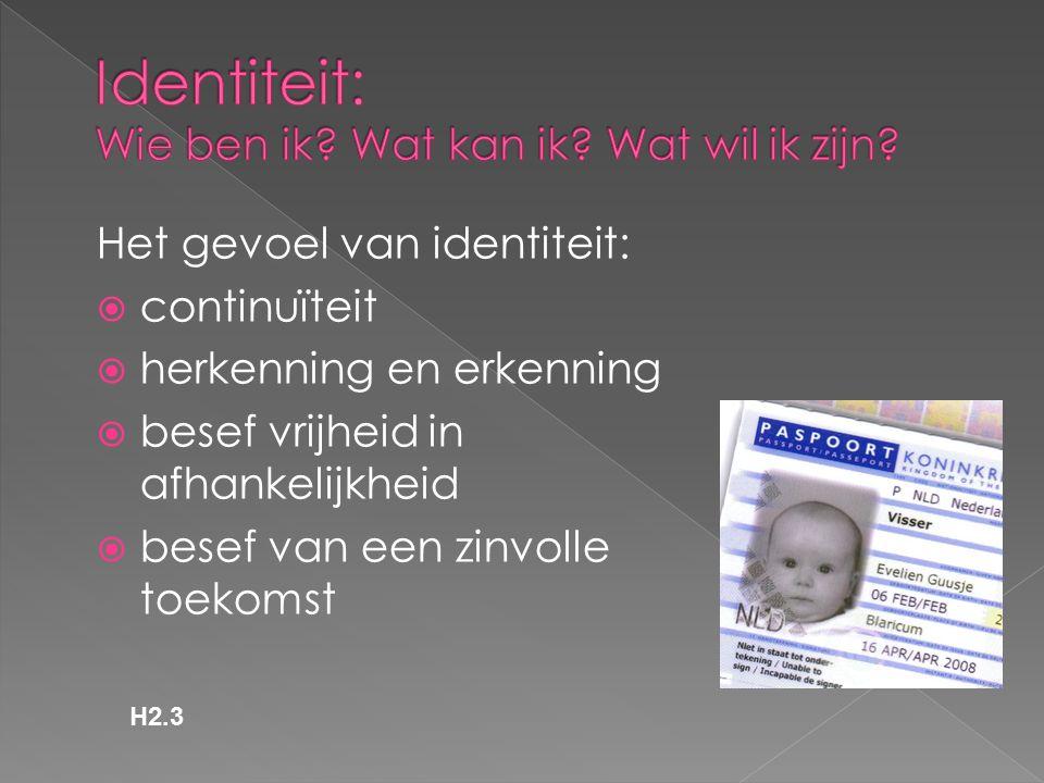 Het gevoel van identiteit:  continuïteit  herkenning en erkenning  besef vrijheid in afhankelijkheid  besef van een zinvolle toekomst H2.3