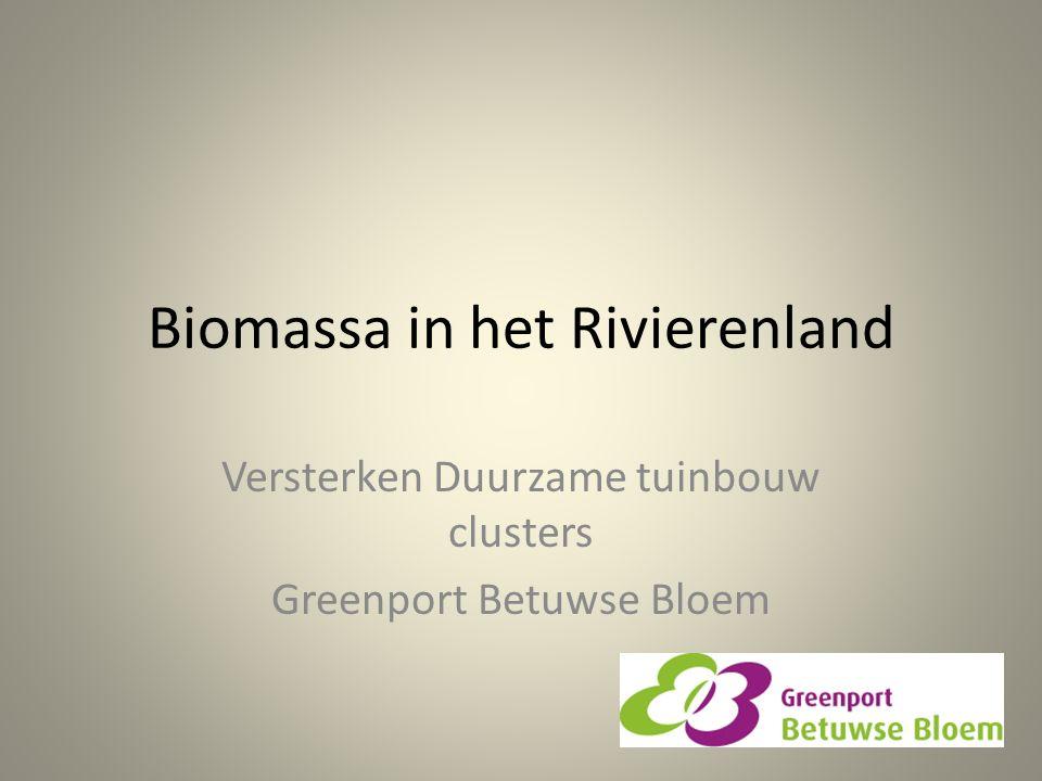 Biomassa in het Rivierenland Versterken Duurzame tuinbouw clusters Greenport Betuwse Bloem