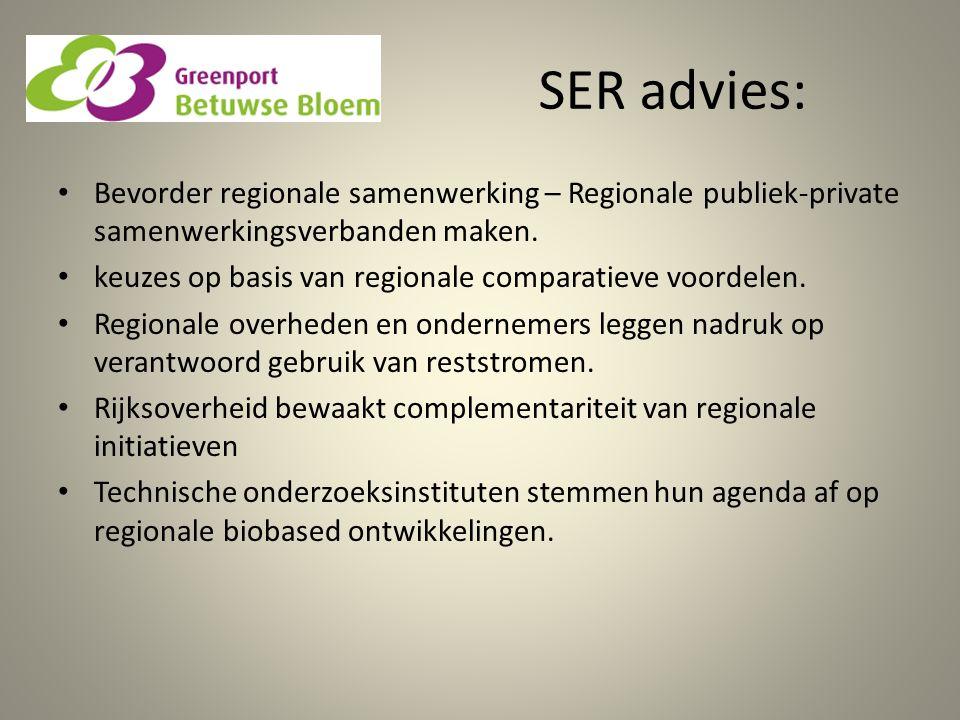 SER advies: Bevorder regionale samenwerking – Regionale publiek-private samenwerkingsverbanden maken. keuzes op basis van regionale comparatieve voord