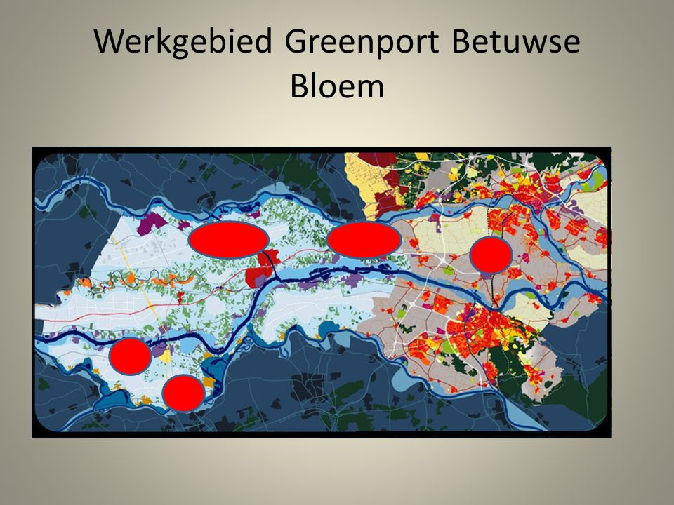 Achtergronden GBB initiatief Opbouw Duurzame Tuinbouwclusters Biomassa-verwerking kan de tuinbouwclusters versterken, met – Energie opwekken uit biomassa – Energie opwekken uit biomassa in combinatie met andere nieuwe energieconcepten – Nieuwe producten uit biomassa (ver weg of dichtbij?) Logistiek……..