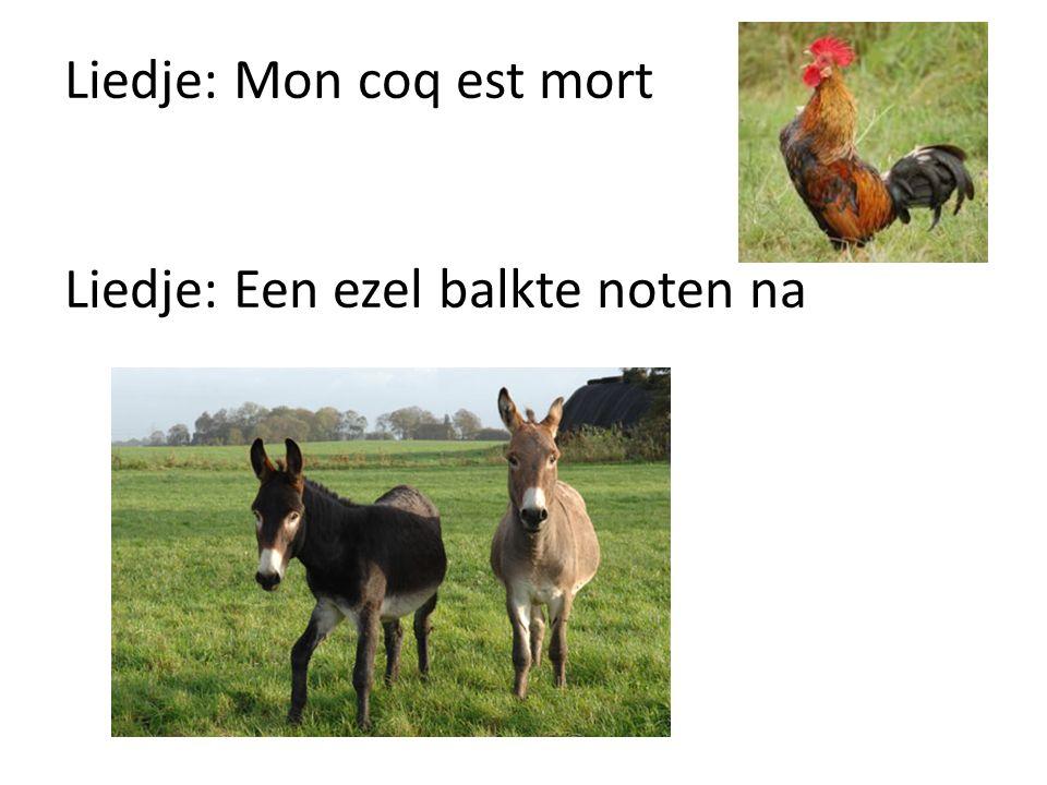 Liedje: Mon coq est mort Liedje: Een ezel balkte noten na
