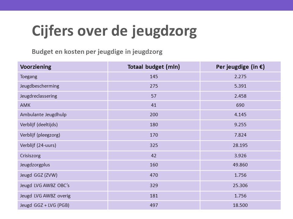 Cijfers over de jeugdzorg Budget en kosten per jeugdige in jeugdzorg VoorzieningTotaal budget (mln)Per jeugdige (in €) Toegang1452.275 Jeugdbeschermin