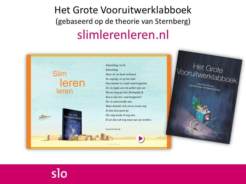 Het Grote Vooruitwerklabboek (gebaseerd op de theorie van Sternberg) slimlerenleren.nl