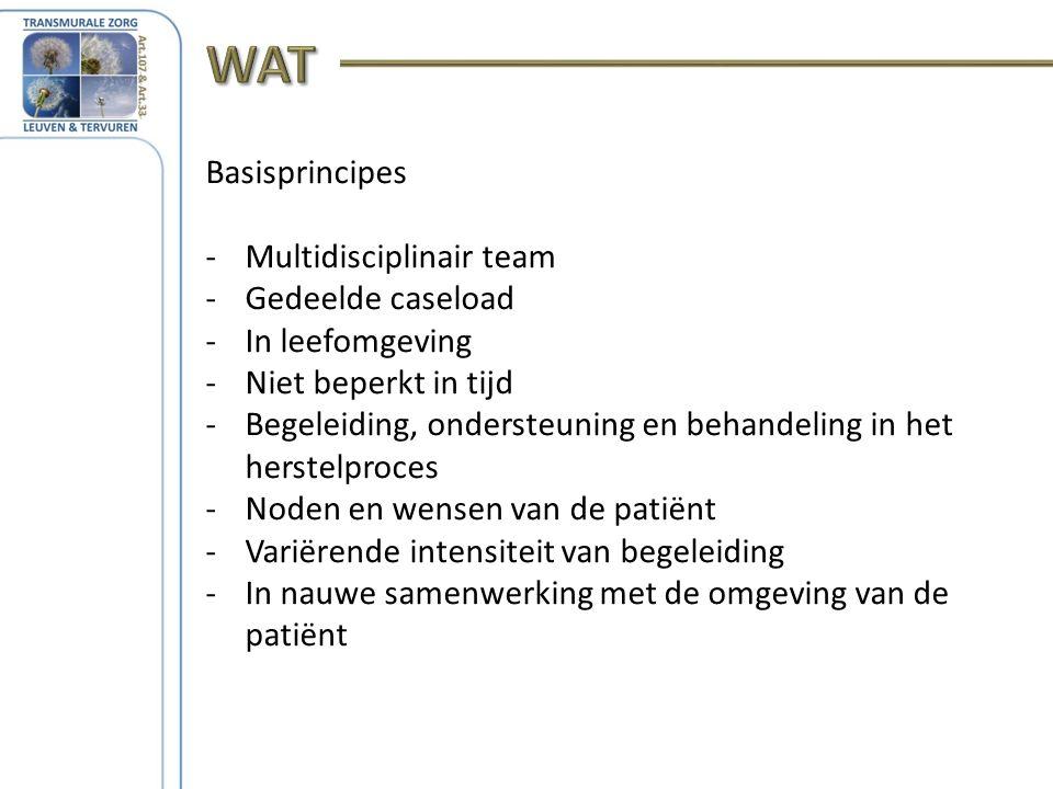 Basisprincipes -Multidisciplinair team -Gedeelde caseload -In leefomgeving -Niet beperkt in tijd -Begeleiding, ondersteuning en behandeling in het herstelproces -Noden en wensen van de patiënt -Variërende intensiteit van begeleiding -In nauwe samenwerking met de omgeving van de patiënt