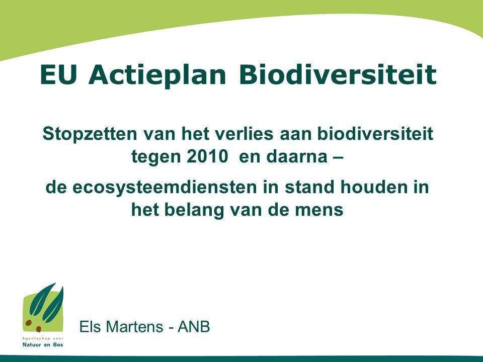EU Actieplan Biodiversiteit Stopzetten van het verlies aan biodiversiteit tegen 2010 en daarna – de ecosysteemdiensten in stand houden in het belang van de mens Els Martens - ANB