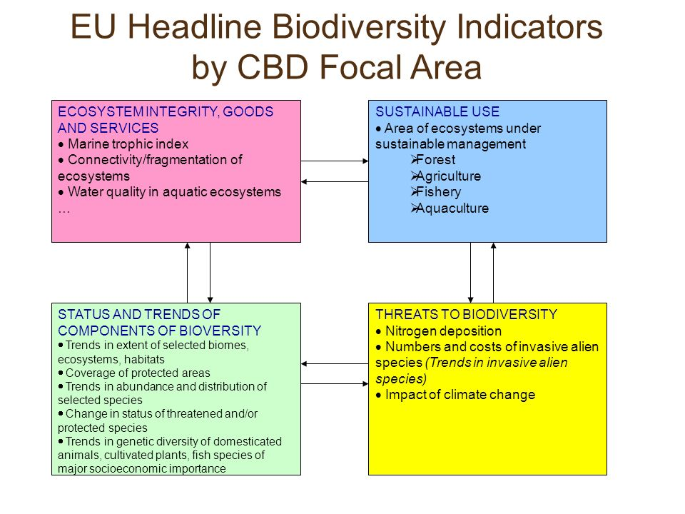 ECOSYSTEM INTEGRITY, GOODS AND SERVICES  Marine trophic index  Connectivity/fragmentation of ecosystems  Water quality in aquatic ecosystems … SUSTAINABLE USE  Area of ecosystems under sustainable management  Forest  Agriculture  Fishery  Aquaculture STATUS AND TRENDS OF COMPONENTS OF BIOVERSITY  Trends in extent of selected biomes, ecosystems, habitats  Coverage of protected areas  Trends in abundance and distribution of selected species  Change in status of threatened and/or protected species  Trends in genetic diversity of domesticated animals, cultivated plants, fish species of major socioeconomic importance THREATS TO BIODIVERSITY  Nitrogen deposition  Numbers and costs of invasive alien species (Trends in invasive alien species)  Impact of climate change EU Headline Biodiversity Indicators by CBD Focal Area