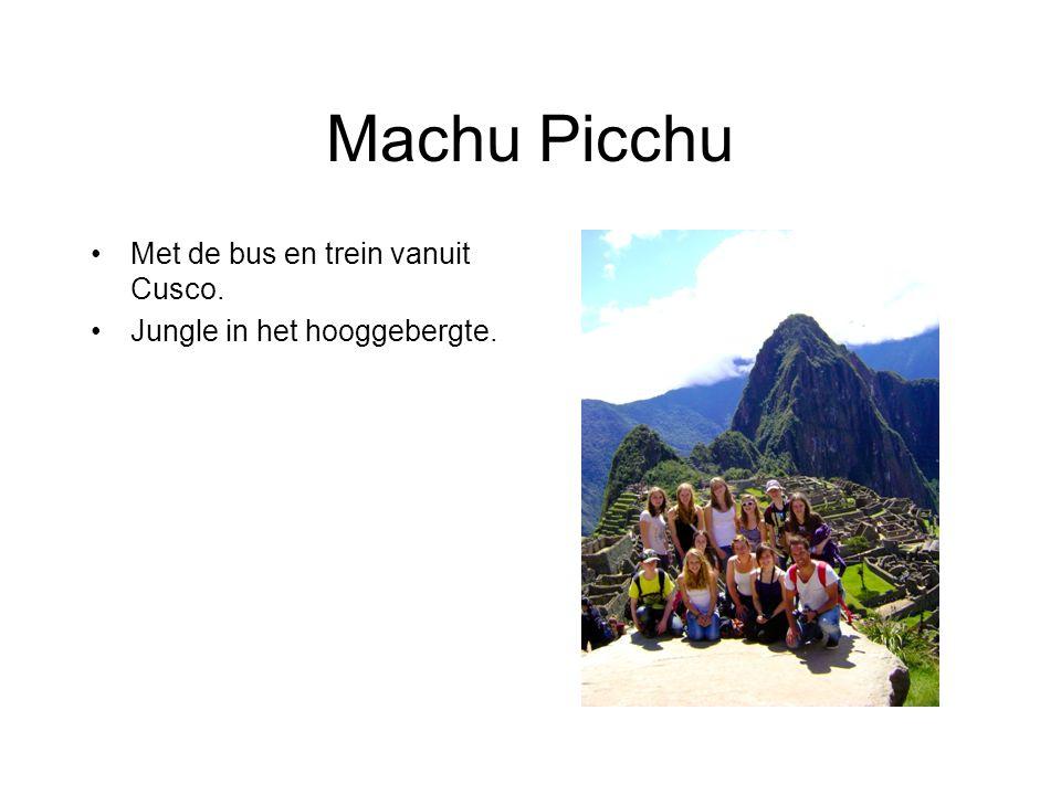 Machu Picchu Met de bus en trein vanuit Cusco. Jungle in het hooggebergte.