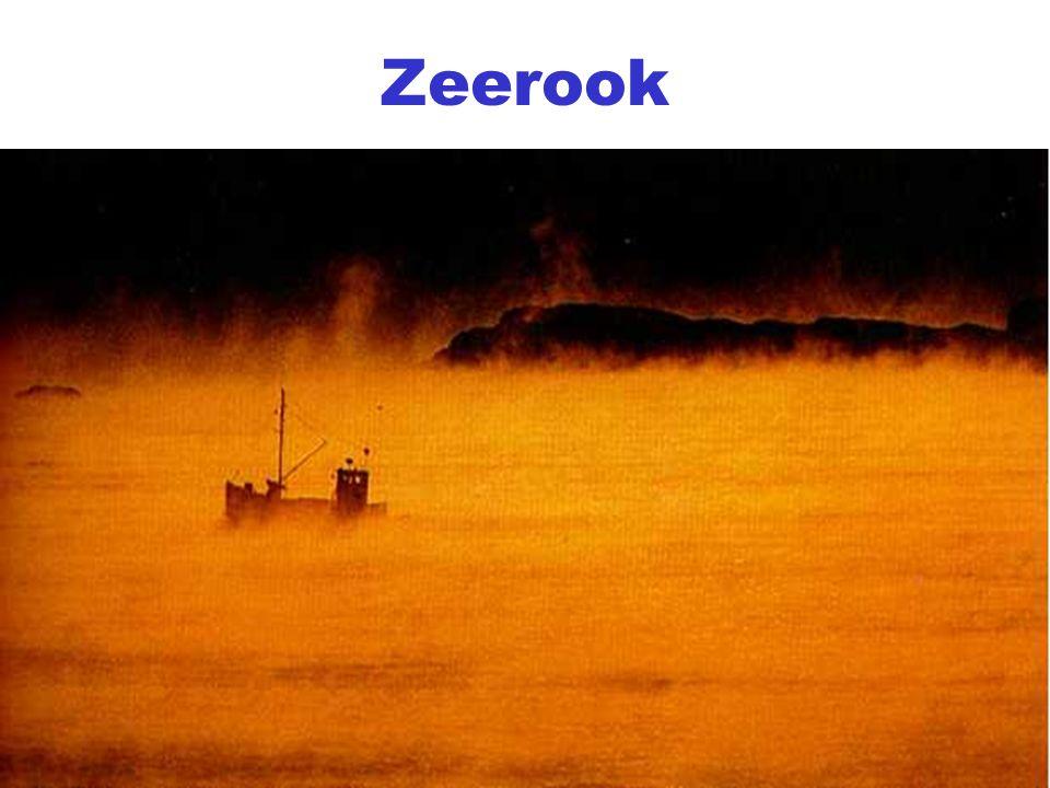 Zeerook