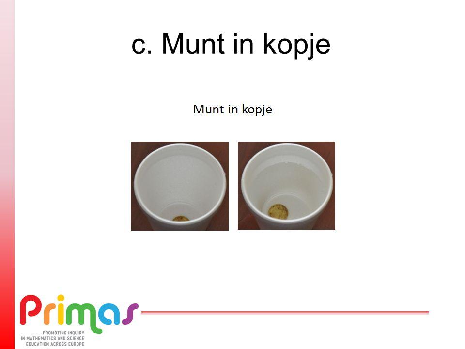 c. Munt in kopje