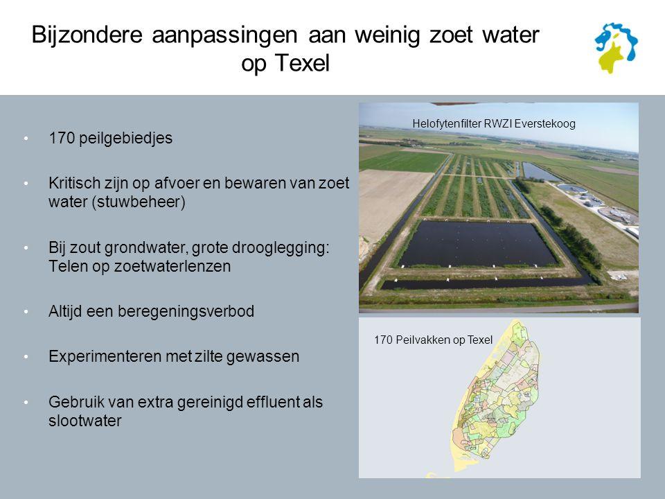 Bijzondere aanpassingen aan weinig zoet water op Texel 170 peilgebiedjes Kritisch zijn op afvoer en bewaren van zoet water (stuwbeheer) Bij zout grondwater, grote drooglegging: Telen op zoetwaterlenzen Altijd een beregeningsverbod Experimenteren met zilte gewassen Gebruik van extra gereinigd effluent als slootwater 170 Peilvakken op Texel Helofytenfilter RWZI Everstekoog