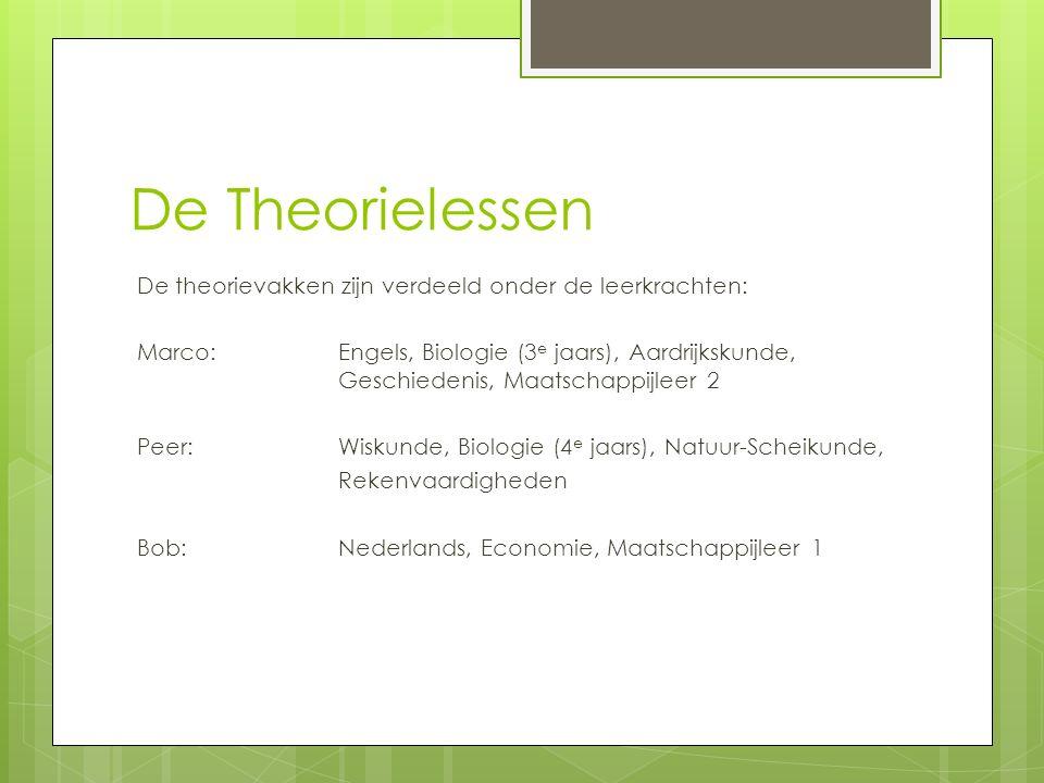 De Theorielessen De theorievakken zijn verdeeld onder de leerkrachten: Marco: Engels, Biologie (3 e jaars), Aardrijkskunde, Geschiedenis, Maatschappijleer 2 Peer:Wiskunde, Biologie (4 e jaars), Natuur-Scheikunde, Rekenvaardigheden Bob:Nederlands, Economie, Maatschappijleer 1