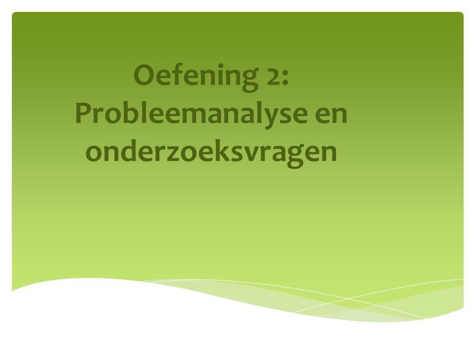 Oefening 2: Probleemanalyse en onderzoeksvragen