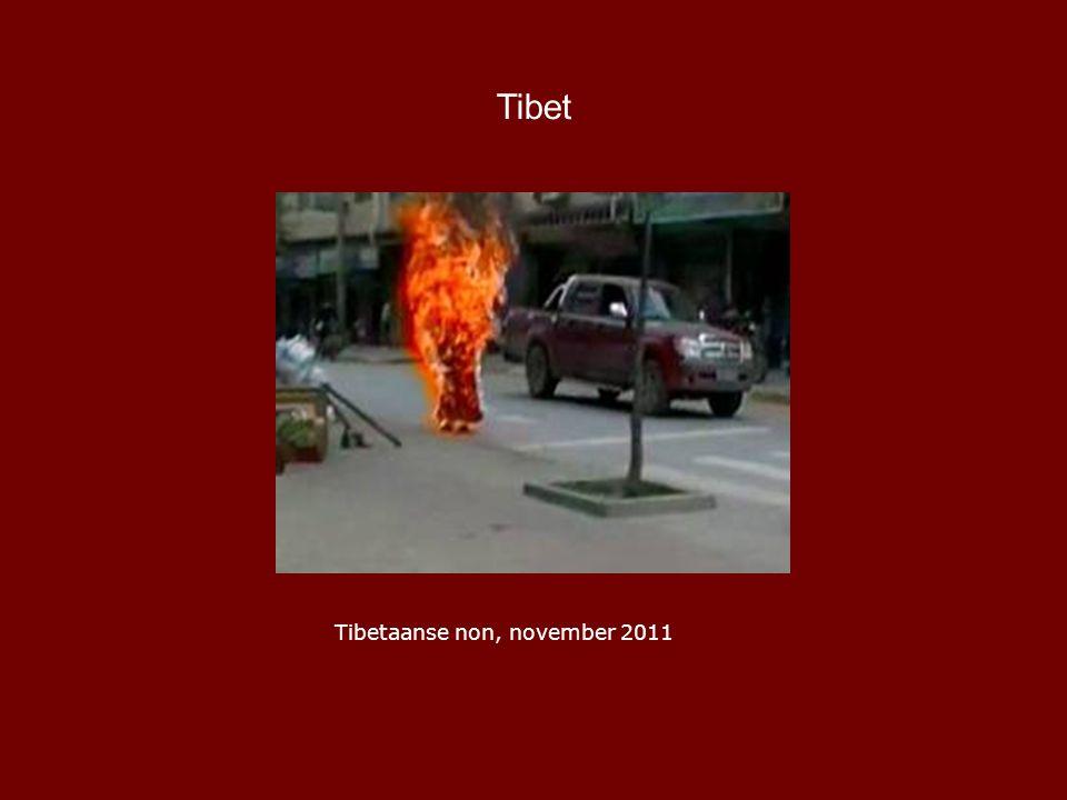 Tibet Tibetaanse non, november 2011