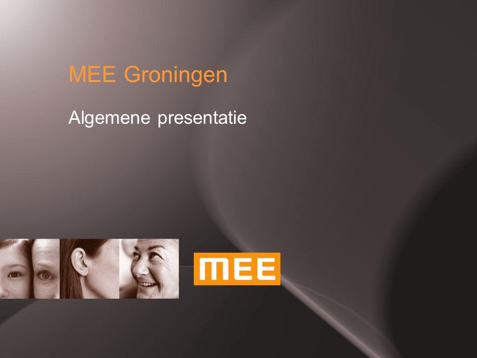 MEE Groningen Algemene presentatie