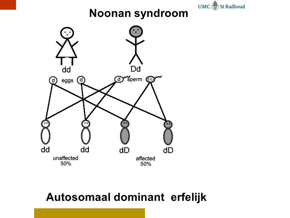 Autosomaal dominant erfelijk Noonan syndroom