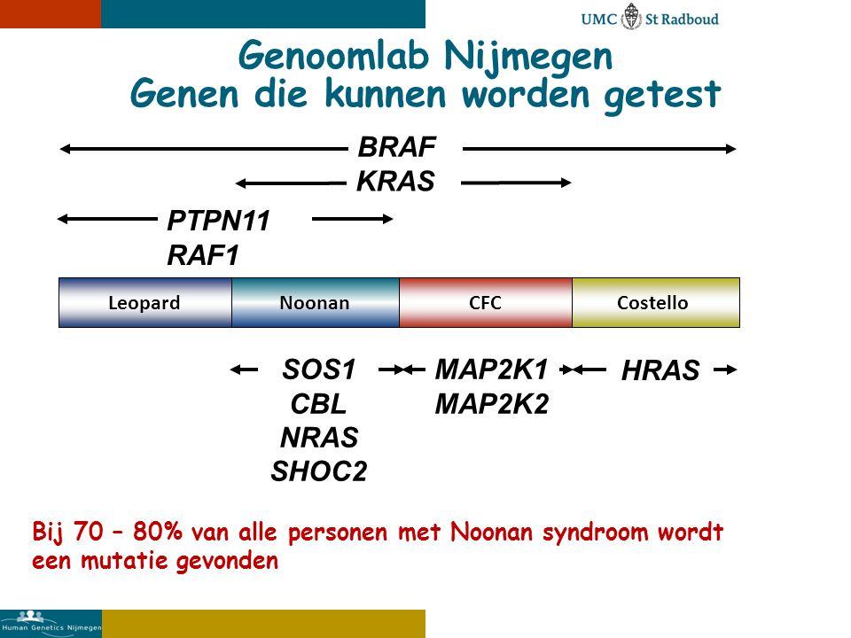 NoonanCostelloCFC SOS1 CBL NRAS SHOC2 MAP2K1 MAP2K2 HRAS KRAS Genoomlab Nijmegen Genen die kunnen worden getest Bij 70 – 80% van alle personen met Noonan syndroom wordt een mutatie gevonden Leopard BRAF PTPN11 RAF1