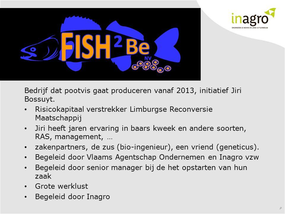Bedrijf dat pootvis gaat produceren vanaf 2013, initiatief Jiri Bossuyt. Risicokapitaal verstrekker Limburgse Reconversie Maatschappij Jiri heeft jare