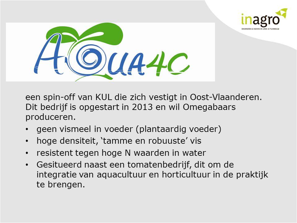 een spin-off van KUL die zich vestigt in Oost-Vlaanderen. Dit bedrijf is opgestart in 2013 en wil Omegabaars produceren. geen vismeel in voeder (plant