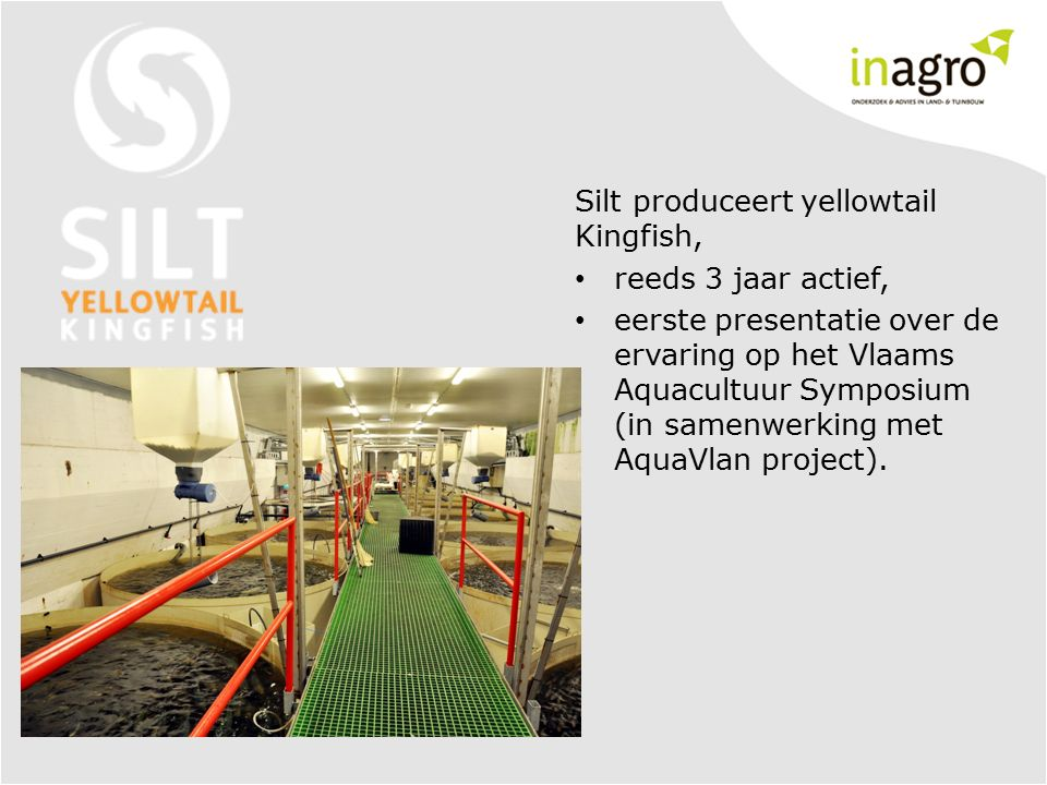 Silt produceert yellowtail Kingfish, reeds 3 jaar actief, eerste presentatie over de ervaring op het Vlaams Aquacultuur Symposium (in samenwerking met AquaVlan project).