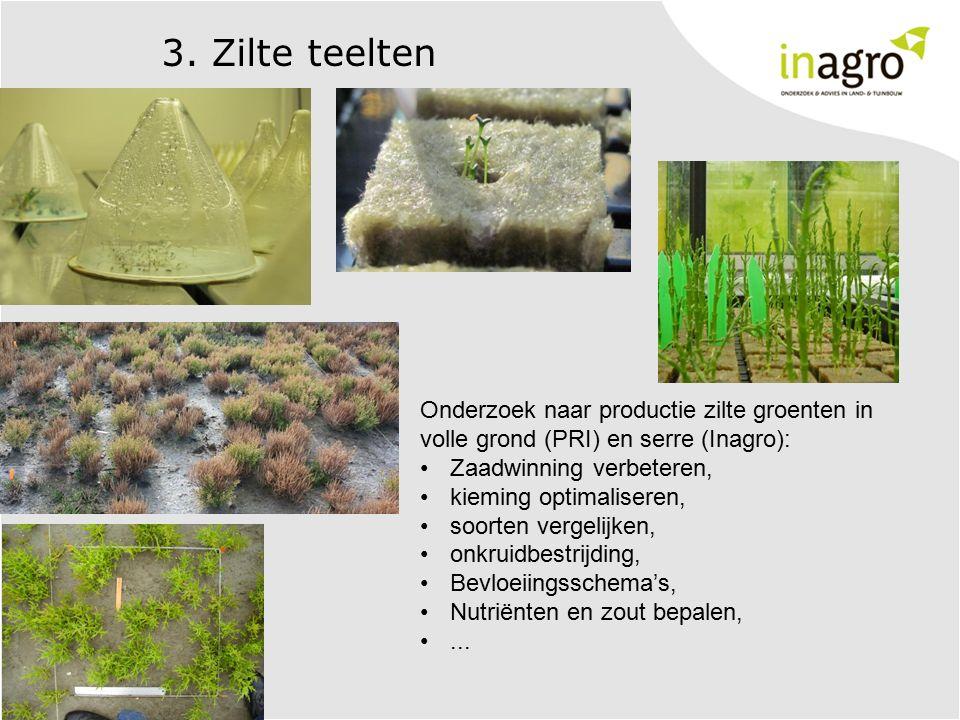 3. Zilte teelten Onderzoek naar productie zilte groenten in volle grond (PRI) en serre (Inagro): Zaadwinning verbeteren, kieming optimaliseren, soorte