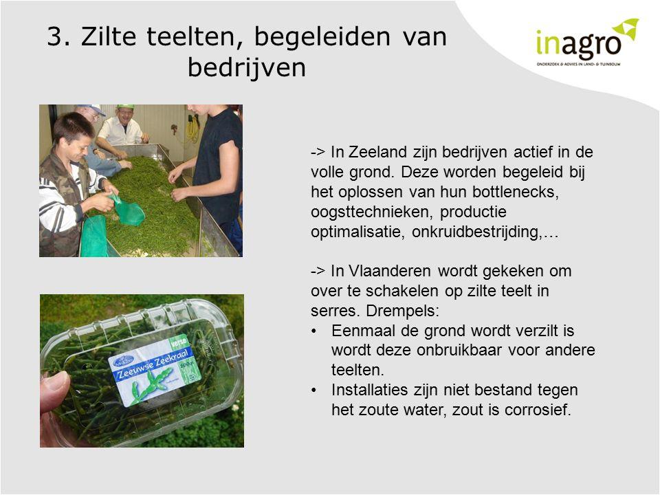 3. Zilte teelten, begeleiden van bedrijven -> In Zeeland zijn bedrijven actief in de volle grond. Deze worden begeleid bij het oplossen van hun bottle