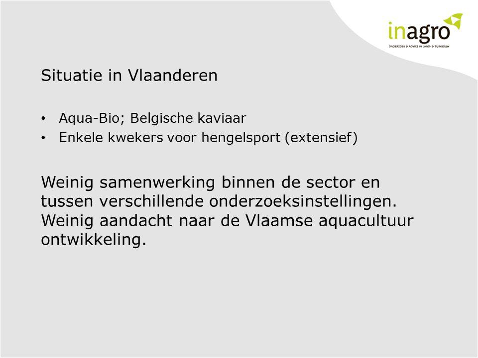 Situatie in Vlaanderen Aqua-Bio; Belgische kaviaar Enkele kwekers voor hengelsport (extensief) Weinig samenwerking binnen de sector en tussen verschil