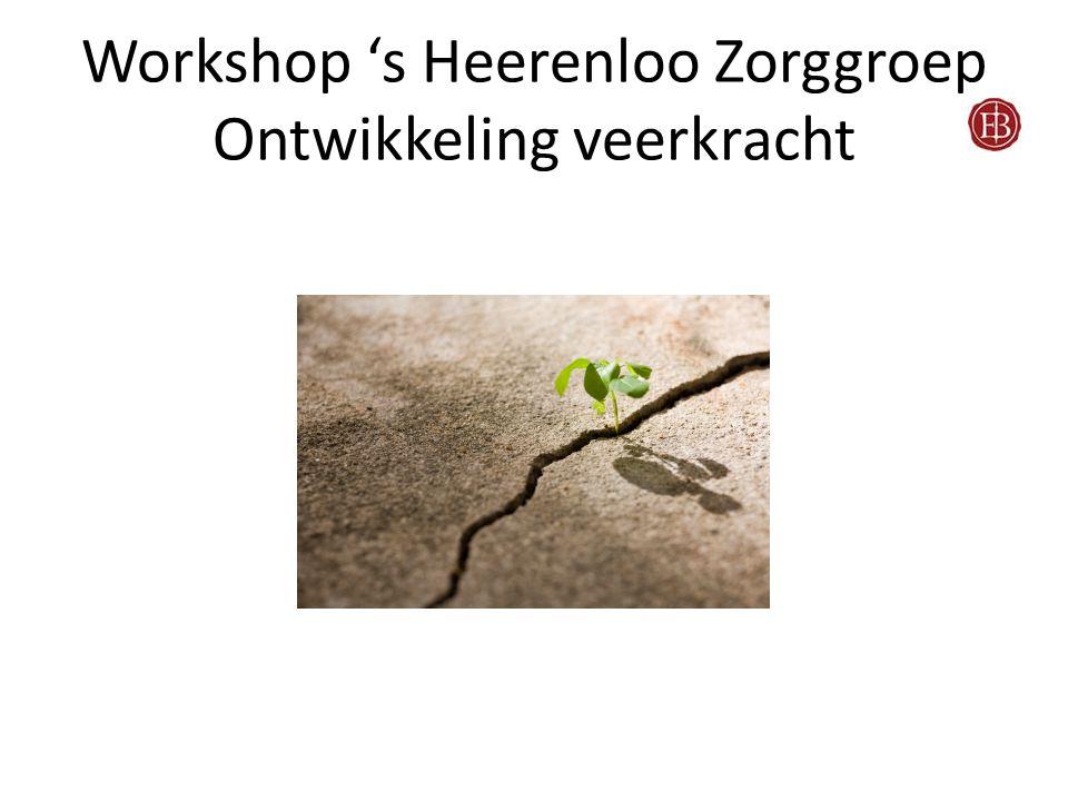 Workshop 's Heerenloo Zorggroep Ontwikkeling veerkracht