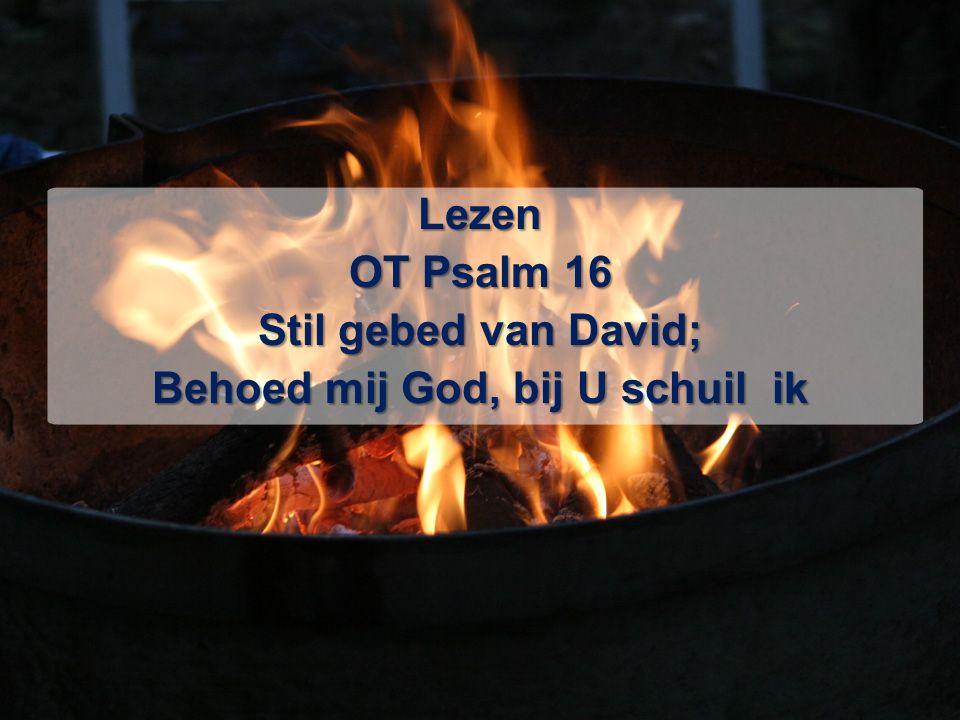 Lezen OT Psalm 16 Stil gebed van David; Behoed mij God, bij U schuil ik
