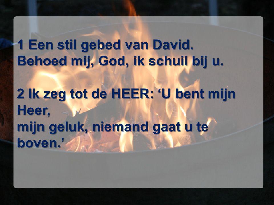 1 Een stil gebed van David. Behoed mij, God, ik schuil bij u. 2 Ik zeg tot de HEER: 'U bent mijn Heer, mijn geluk, niemand gaat u te boven.'