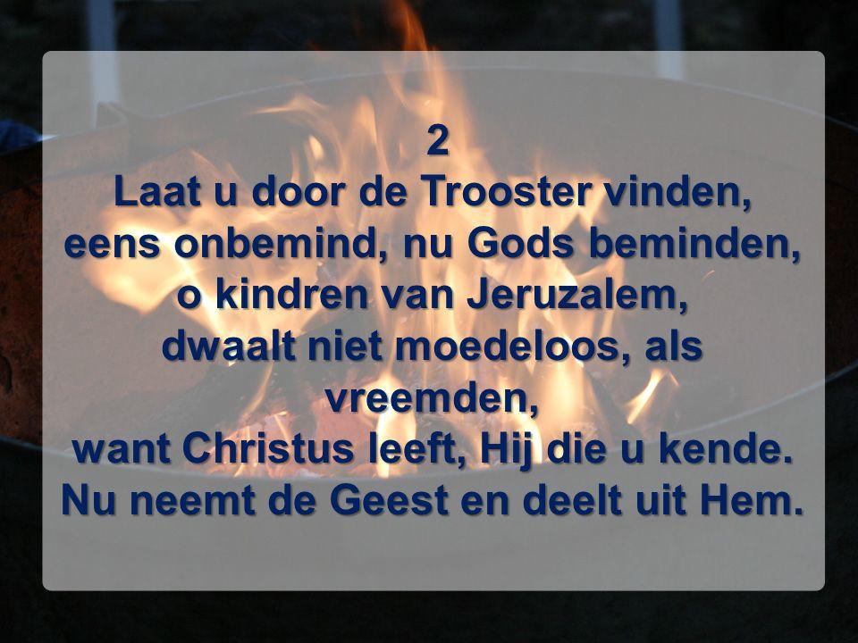 2 Laat u door de Trooster vinden, eens onbemind, nu Gods beminden, o kindren van Jeruzalem, dwaalt niet moedeloos, als vreemden, want Christus leeft, Hij die u kende.