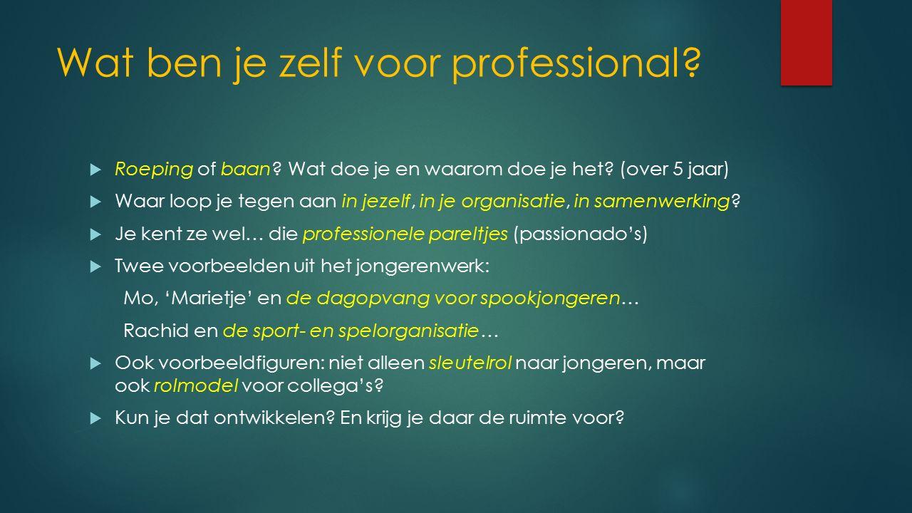 Wat ben je zelf voor professional. Roeping of baan.