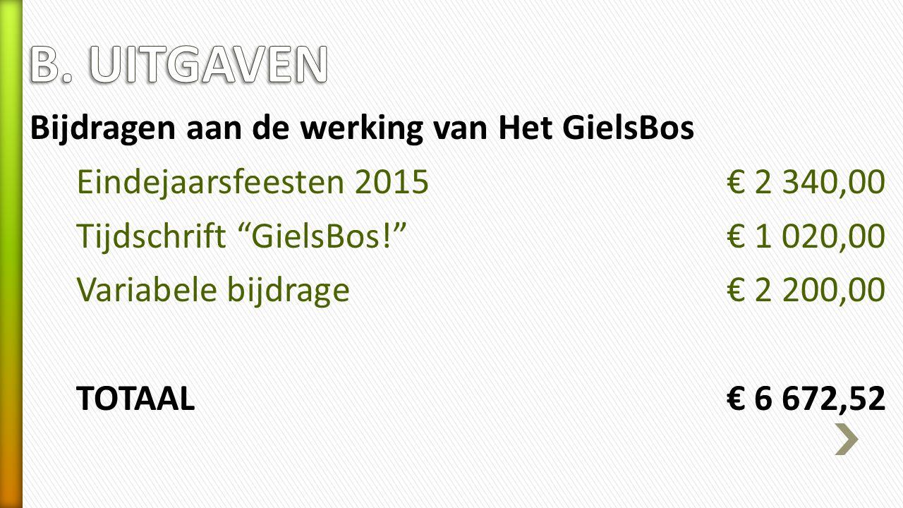 Bijdragen aan de werking van Het GielsBos Eindejaarsfeesten 2015€ 2 340,00 Tijdschrift GielsBos! € 1 020,00 Variabele bijdrage € 2 200,00 TOTAAL€ 6 672,52