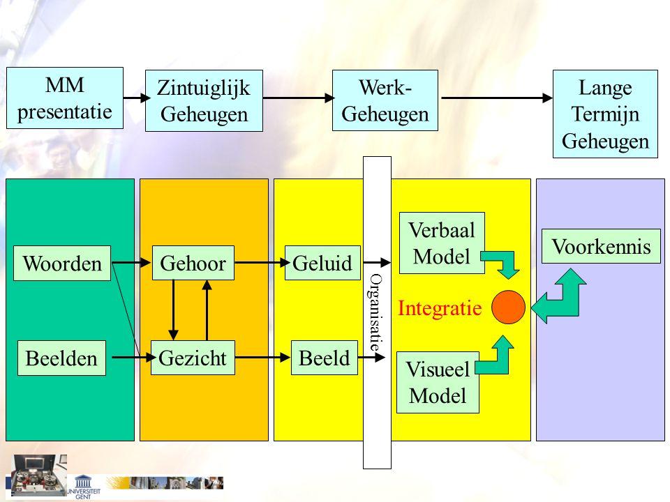 MM presentatie Zintuiglijk Geheugen Werk- Geheugen Lange Termijn Geheugen Woorden Beelden Gehoor Gezicht Geluid Beeld Verbaal Model Visueel Model Voorkennis Integratie Organisatie