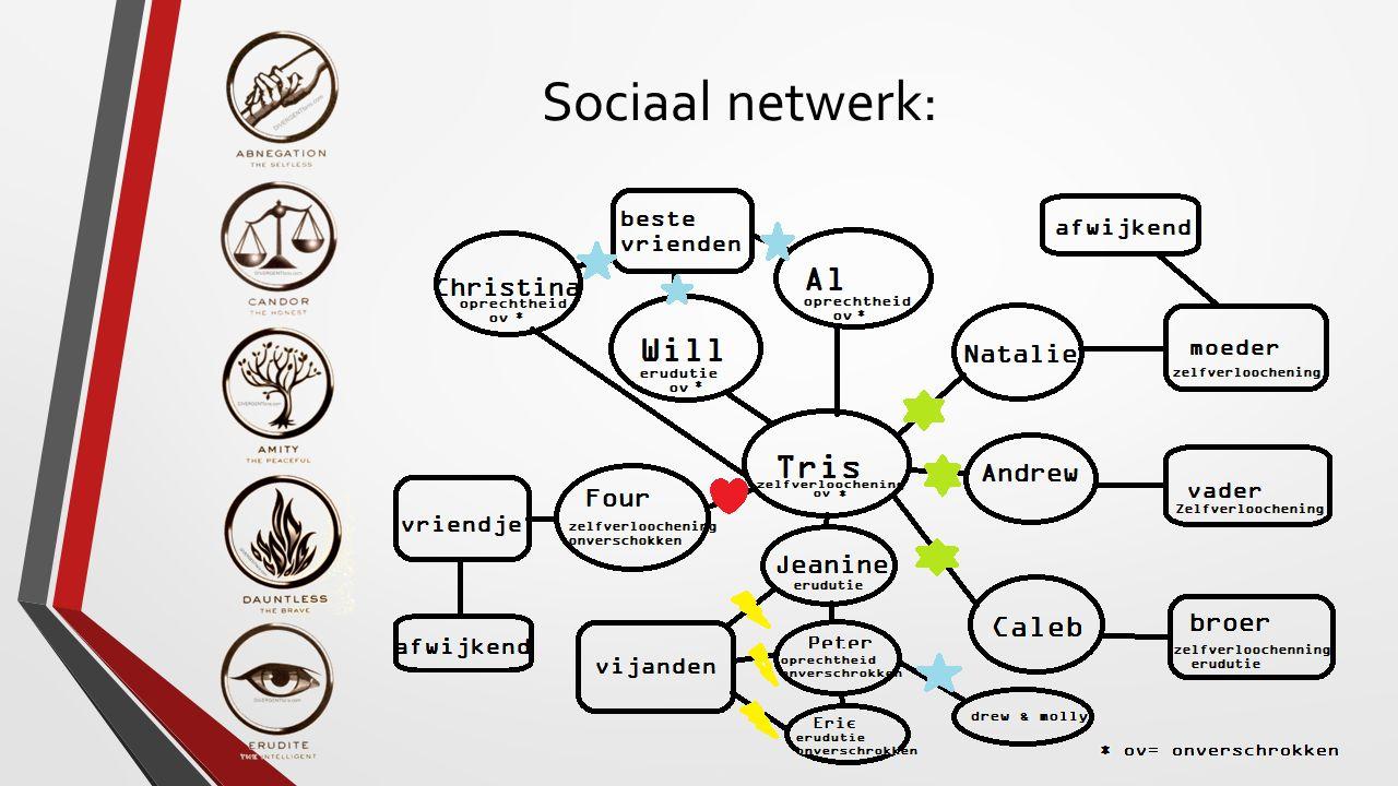 Sociaal netwerk: