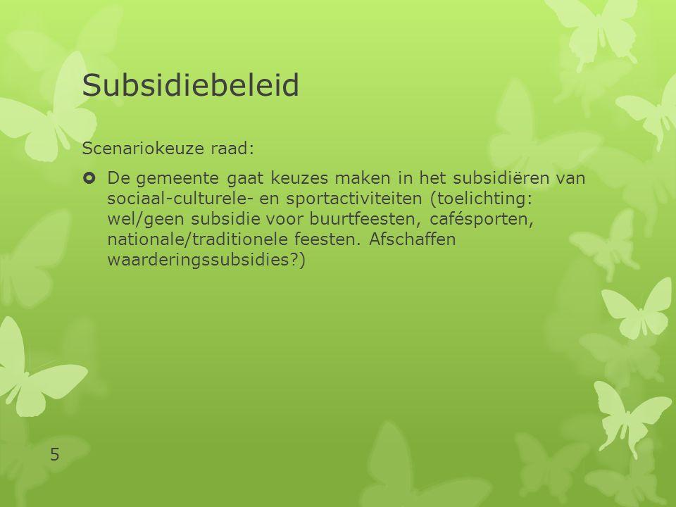 Subsidiebeleid Kaders uit begrotingsvergadering november 2012:  Vanaf 2013 vervalt het budget voor incidentele subsidies.