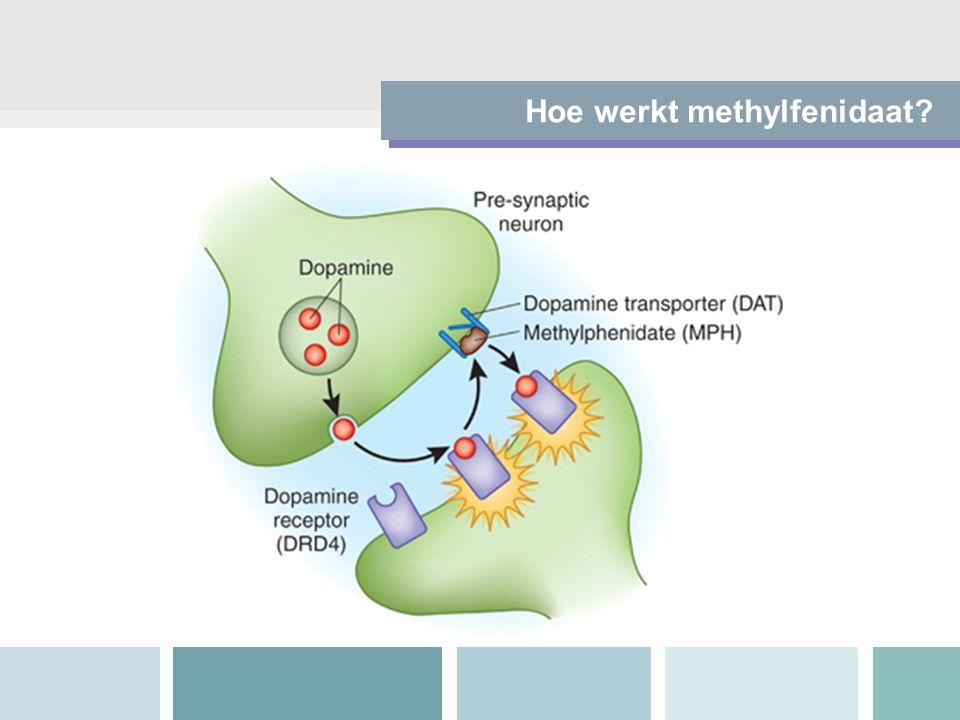 Hoe werkt methylfenidaat?
