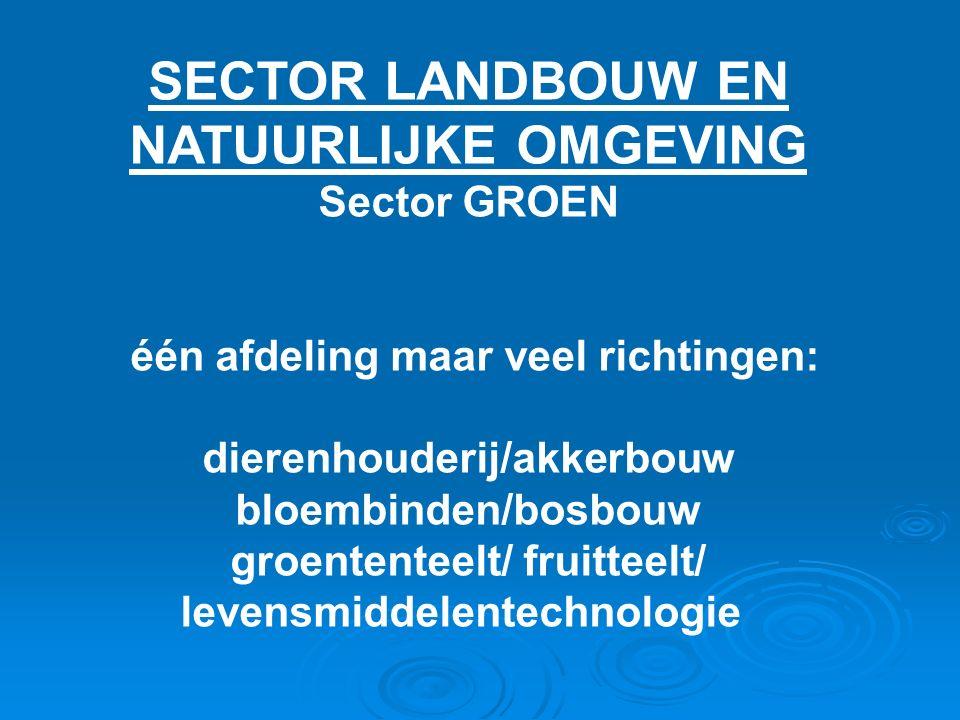SECTOR LANDBOUW EN NATUURLIJKE OMGEVING Sector GROEN één afdeling maar veel richtingen: dierenhouderij/akkerbouw bloembinden/bosbouw groententeelt/ fruitteelt/ levensmiddelentechnologie
