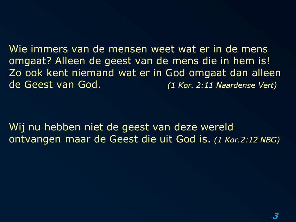 3 Wij nu hebben niet de geest van deze wereld ontvangen maar de Geest die uit God is.