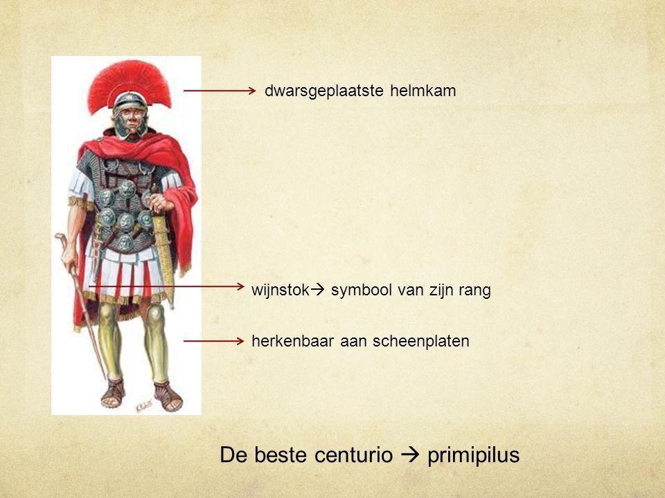 De beste centurio  primipilus dwarsgeplaatste helmkam herkenbaar aan scheenplaten wijnstok  symbool van zijn rang