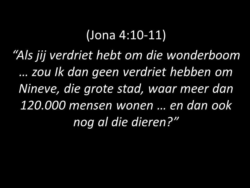 """(Jona 4:10-11) """"Als jij verdriet hebt om die wonderboom … zou Ik dan geen verdriet hebben om Nineve, die grote stad, waar meer dan 120.000 mensen wone"""