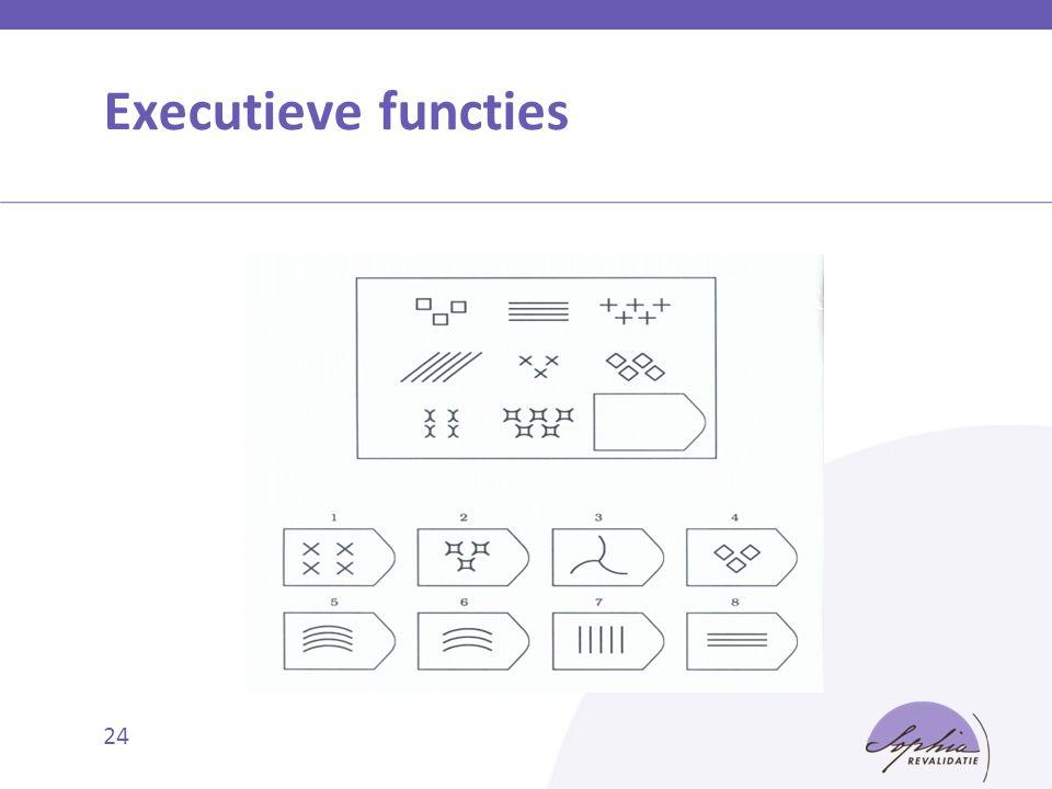 Executieve functies 24
