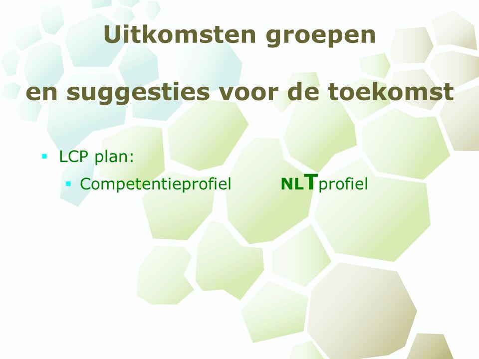 Uitkomsten groepen en suggesties voor de toekomst  LCP plan:  Competentieprofiel NL T profiel