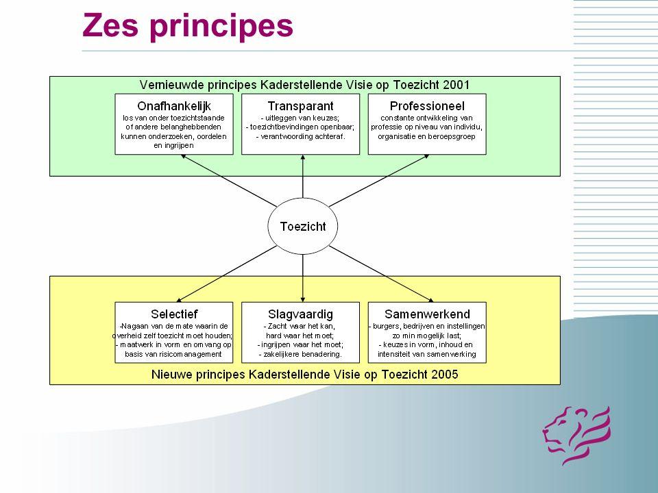 Zes principes