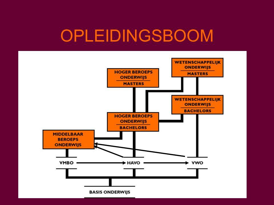 OPLEIDINGSBOOM