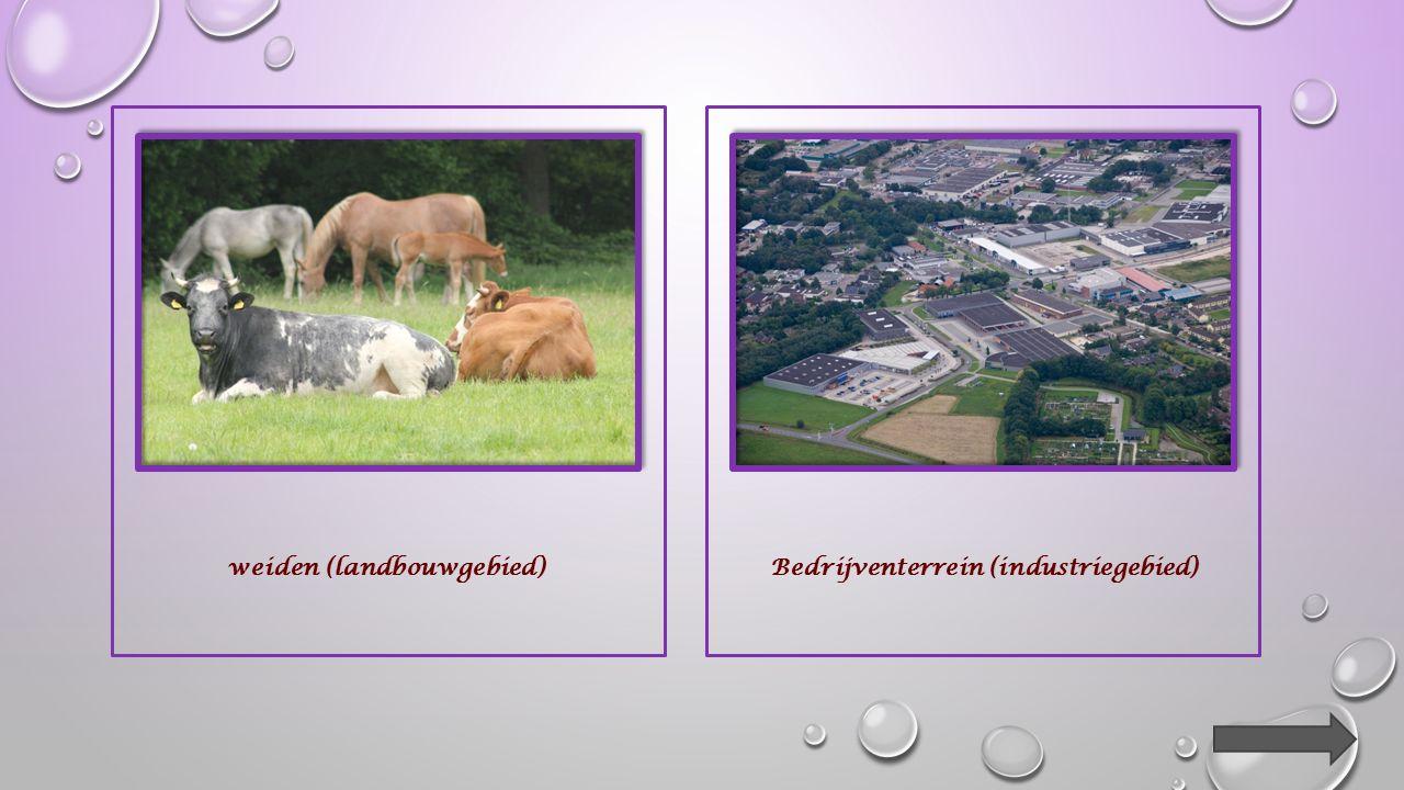 bosakkers (landbouwgebied)