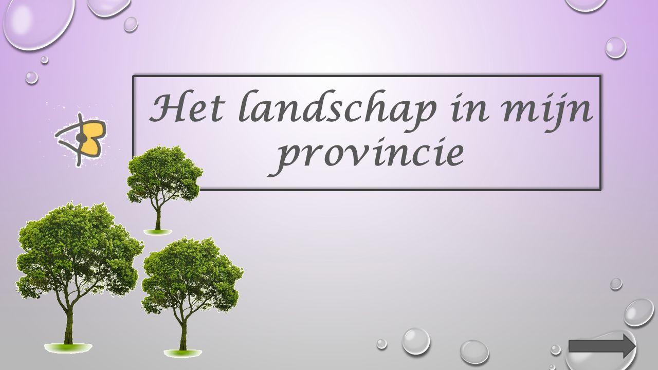 Het landschap in mijn provincie