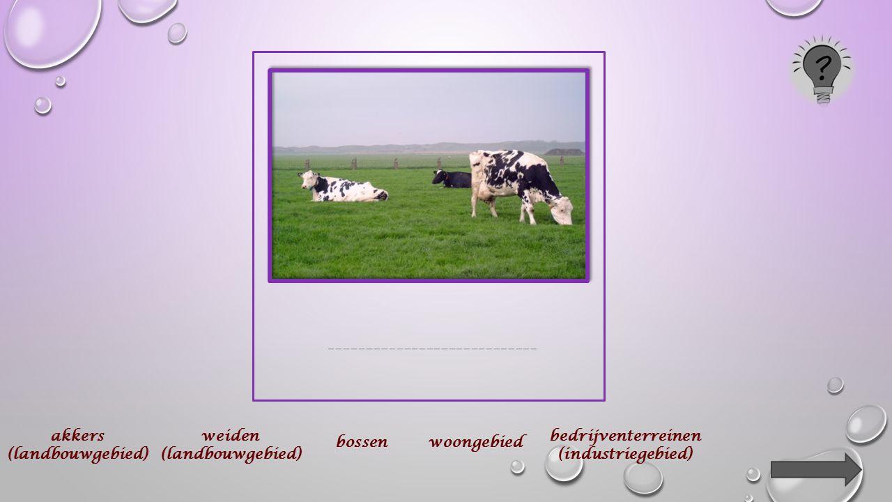 Op de volgende dia's bemerk je foto's van landschappen in je provincie.