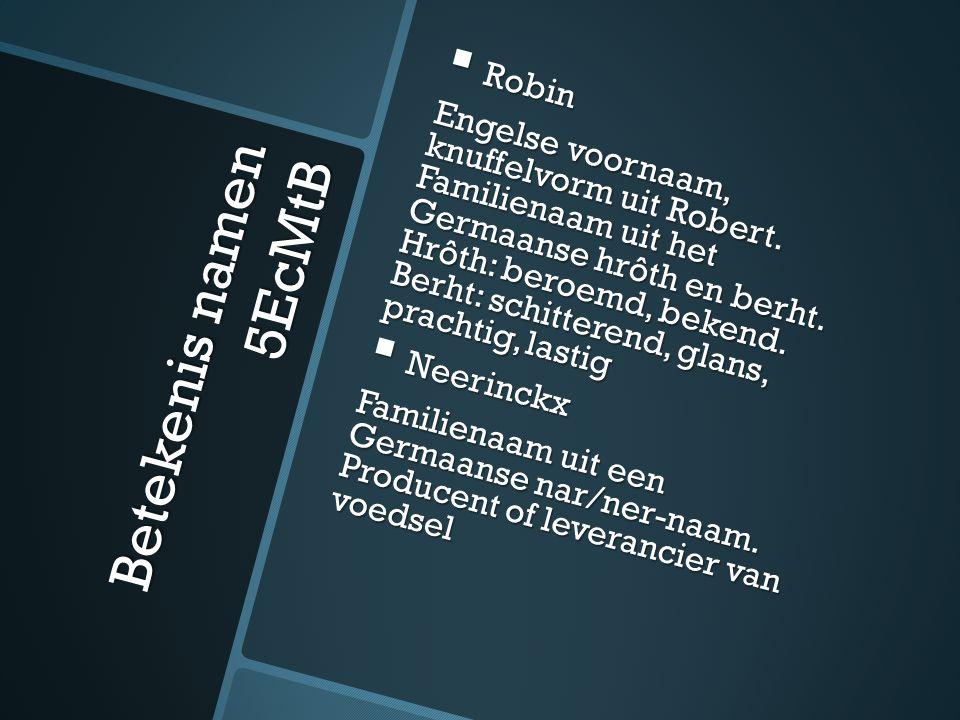 Betekenis namen 5EcMtB  Robin Engelse voornaam, knuffelvorm uit Robert.