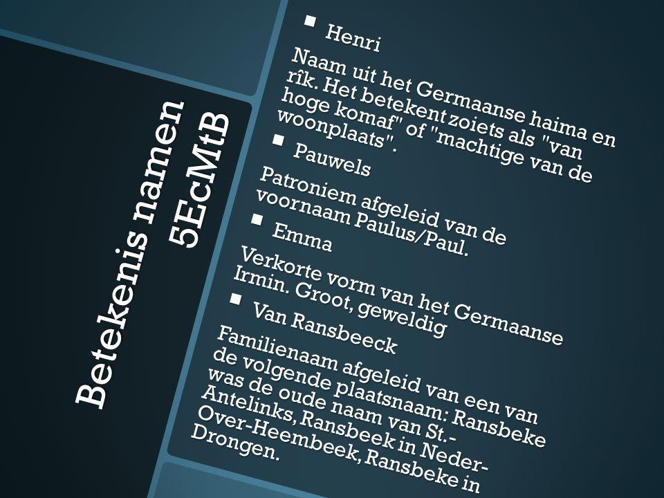 Betekenis namen 5EcMtB  Henri Naam uit het Germaanse haima en rîk.